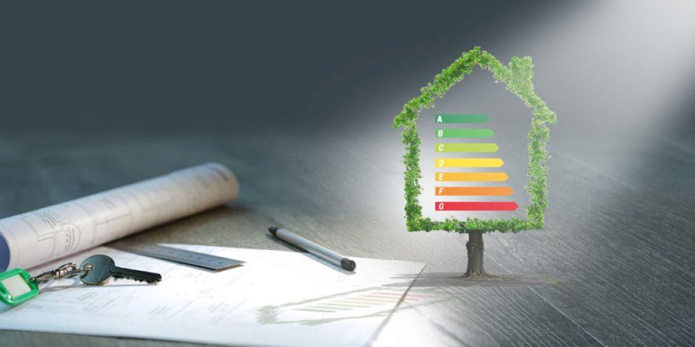 Pourquoi faire un diagnostic immobilier ?